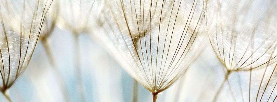 Er jeres produkter biologisk nedbrydelige?