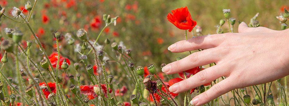 Sunde hænder og negle